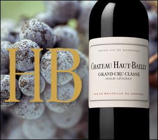 Haut-Bailly, un terroir unique à Pessac Léogan